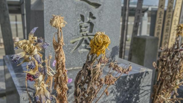 天徳寺永代供養アイキャッチ画像